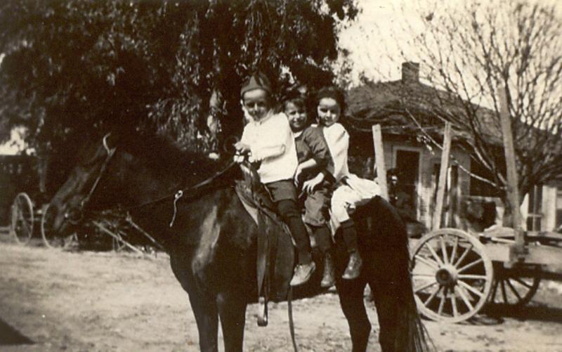 Fred Douglas Hawkins, Evelyn K. Oldenburger and Joy Bernice Hawkins
