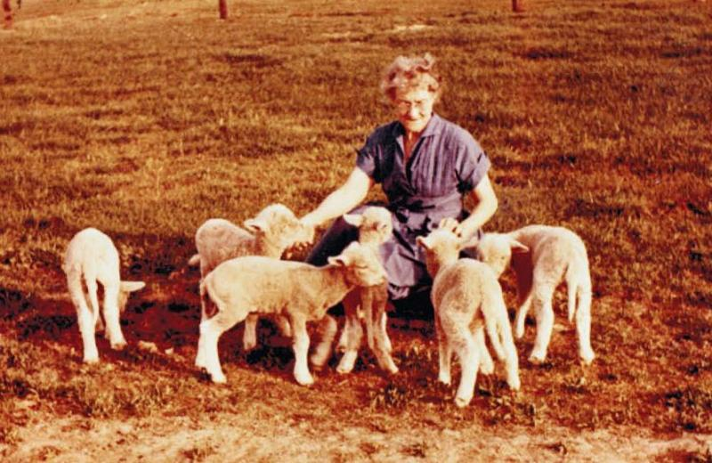 Lulu Ellen Roberts Kirby on Willow Creek with her spring bummer lambs - This is my favorite photograph of my grandmother.