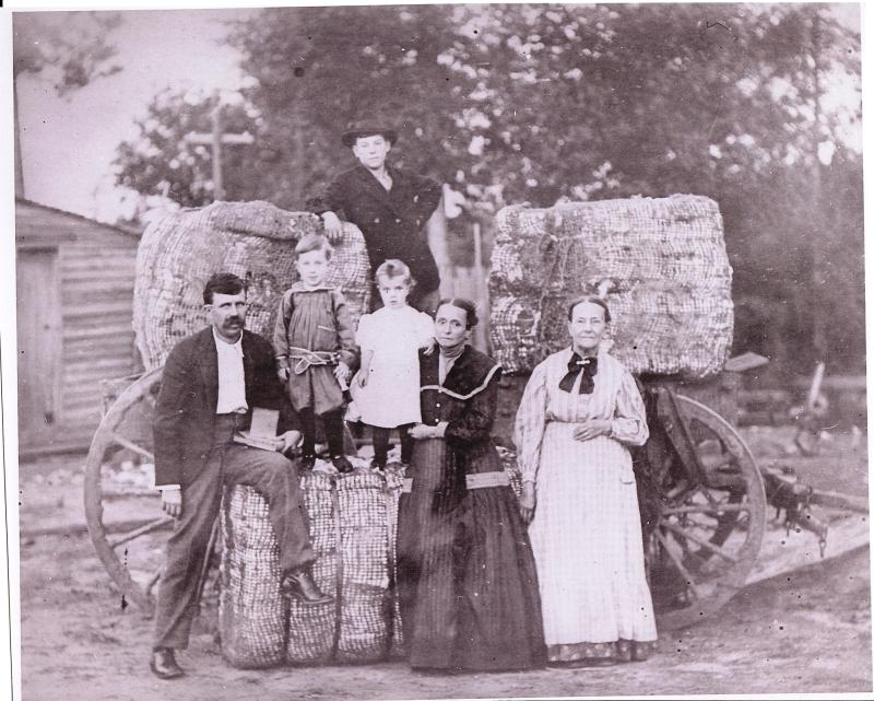Bargie (Coon) Carter holding his business ledger (pencil behind his ear) with Delma, Ollie, Willie Ann and his mother Francis Carter; and cousin Tinsley Jackson on top of cotton bale.